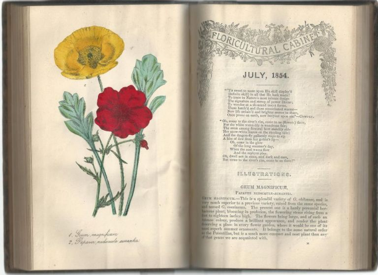 The Floricultural Cabinet and Florists' Magazine (January - December 1854). Joseph Harrison.
